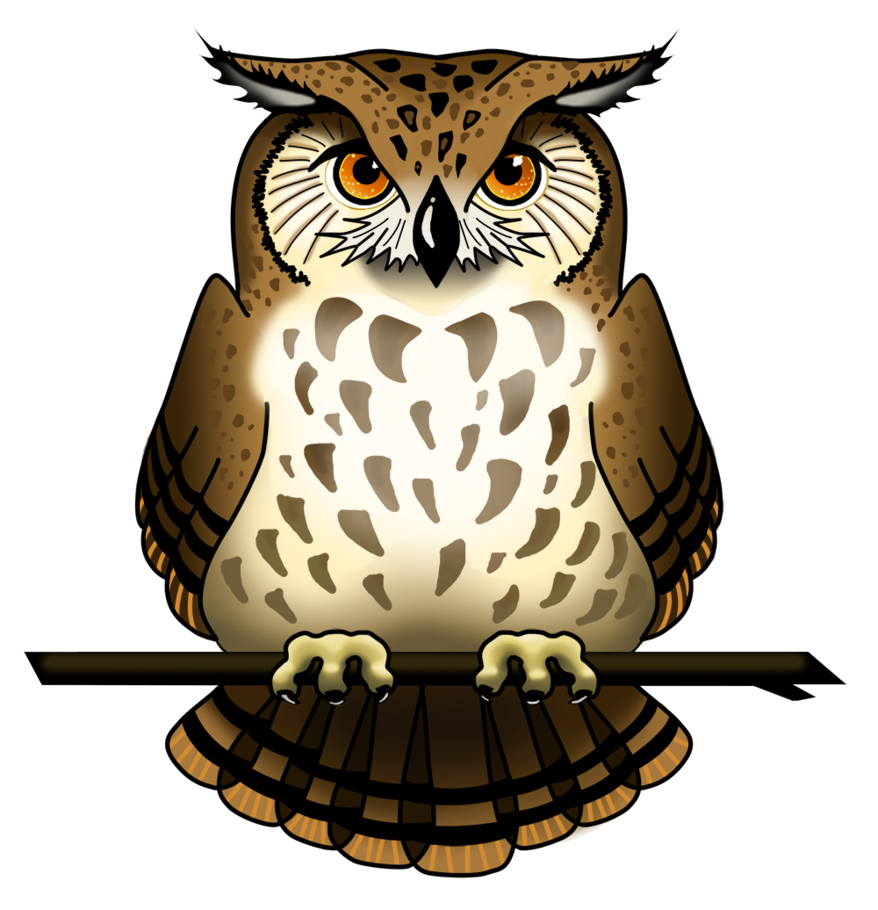 Owl PNG Picture SVG Clip arts
