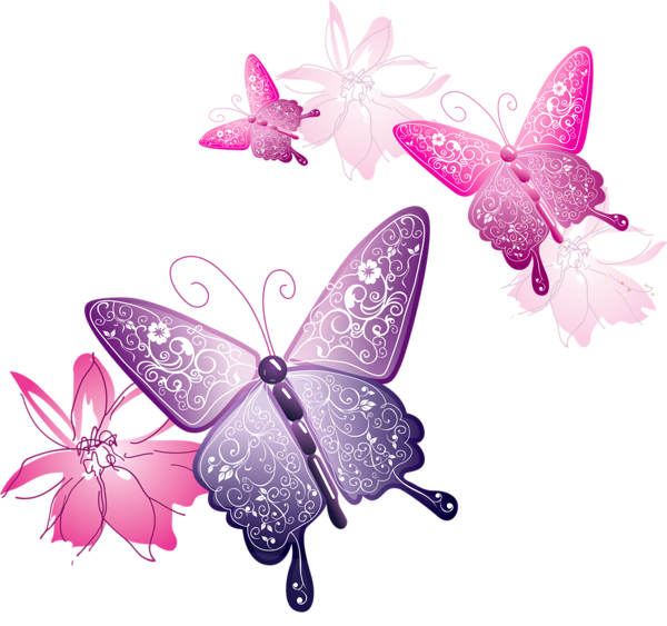 Pink Butterfly SVG Clip arts