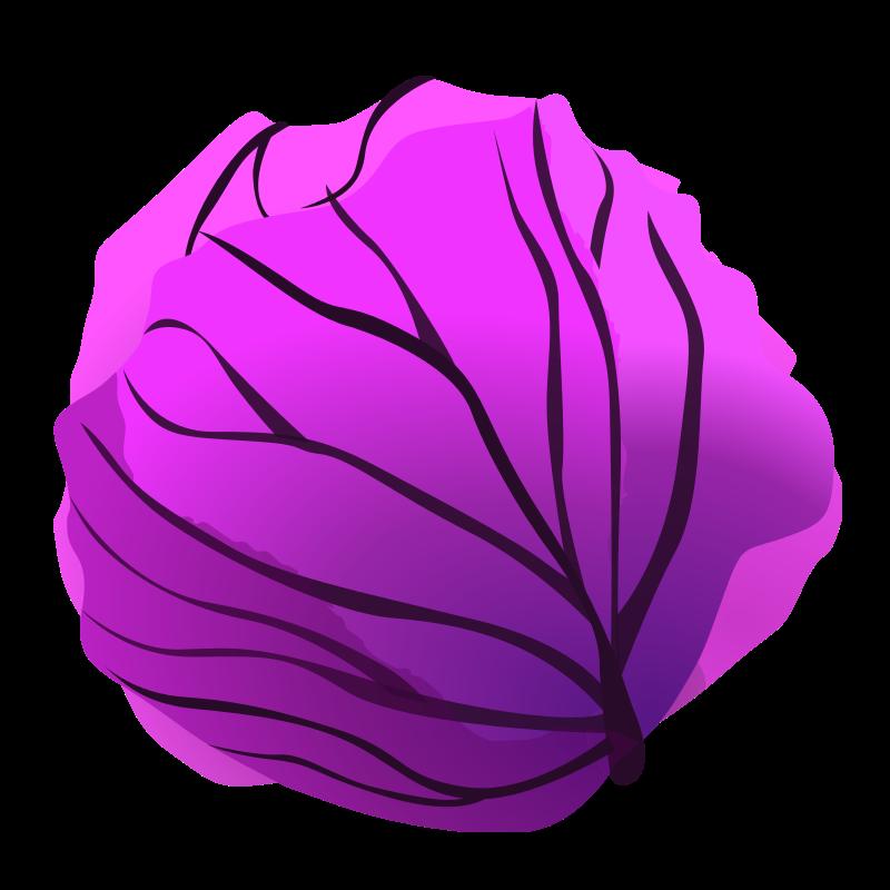 Purple Cabbage Clip Art PNG SVG Clip arts