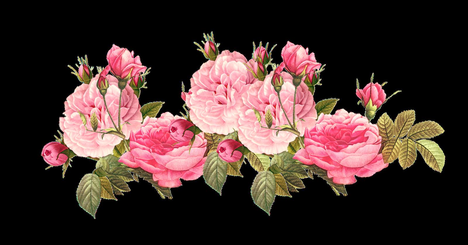 Romantic Pink Flower Border PNG Photos SVG Clip arts