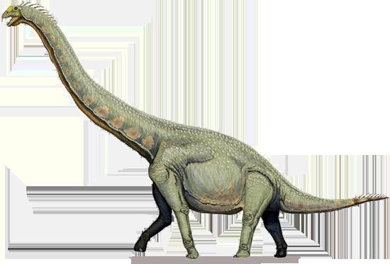 Sauropod PNG Free Download SVG Clip arts
