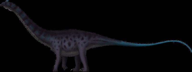 Sauropod PNG Image SVG Clip arts