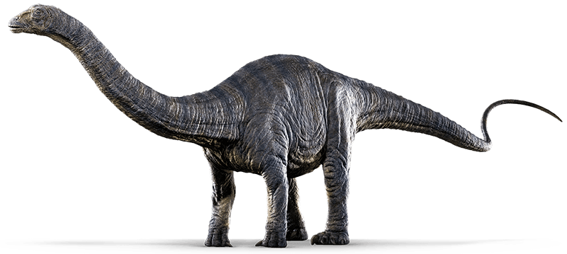 Sauropod PNG Photos PNG file