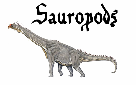 Sauropod PNG Transparent PNG file