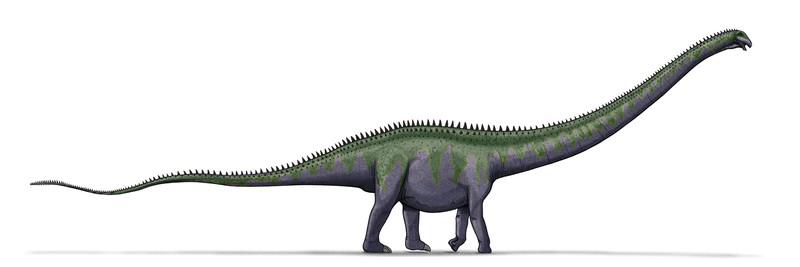 Sauropod Transparent Images PNG SVG Clip arts