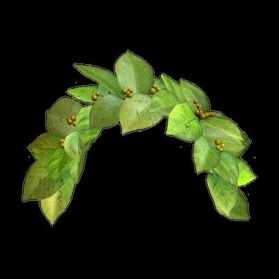 Snapchat Flower Crown PNG Image SVG Clip arts