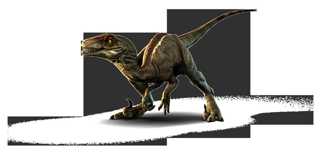 Velociraptor PNG Picture SVG Clip arts