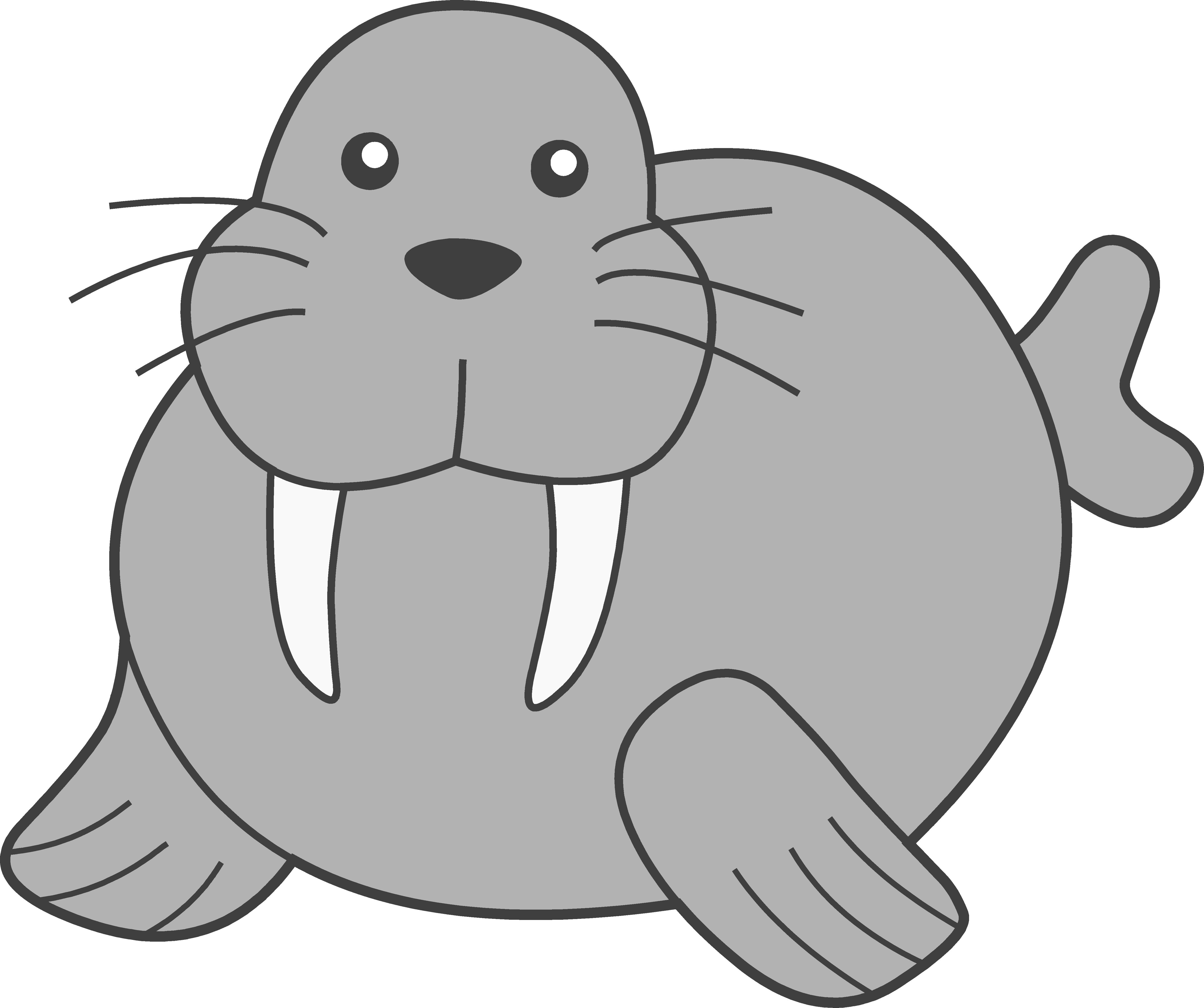 Walrus PNG Image SVG Clip arts
