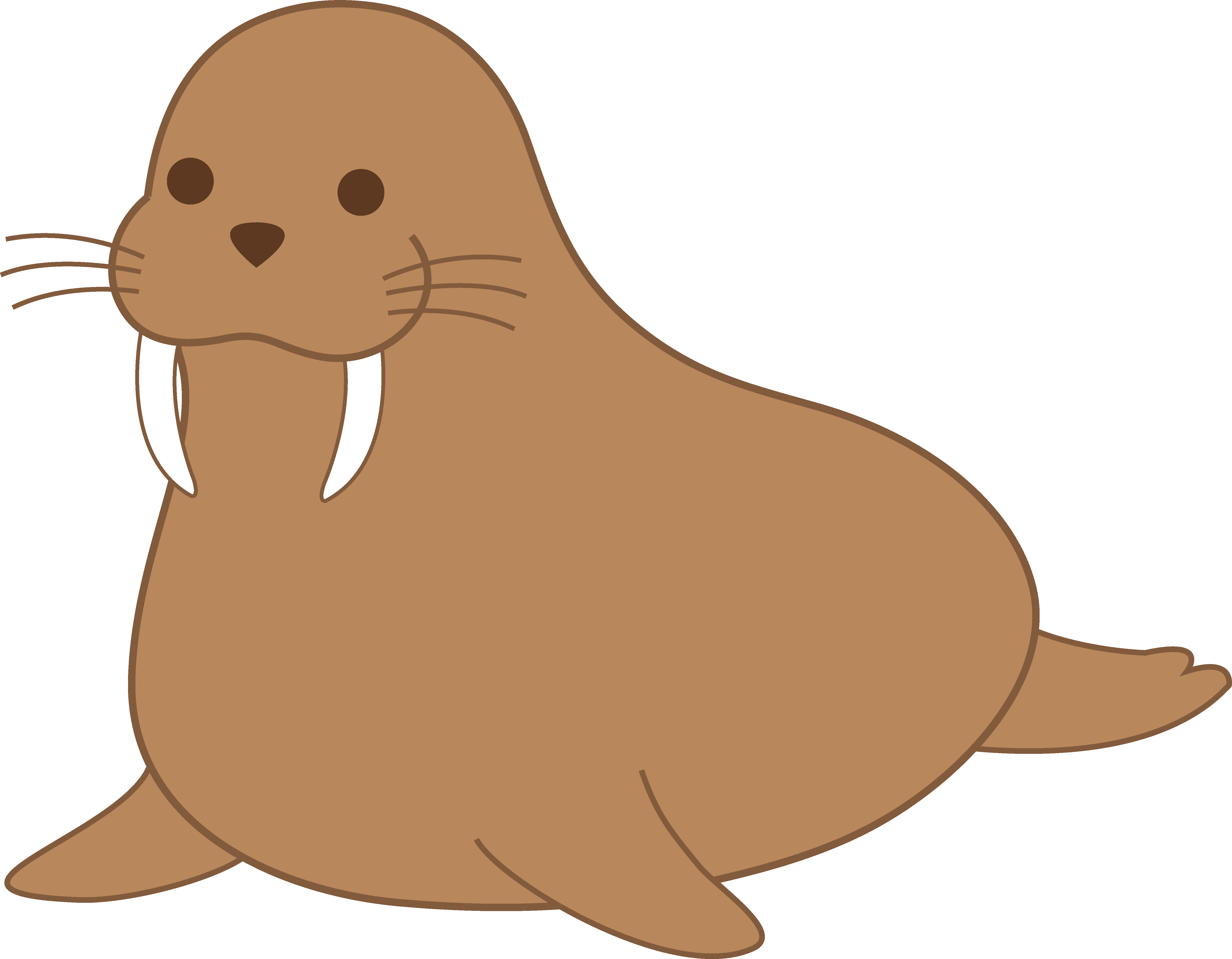 Walrus PNG Picture SVG Clip arts
