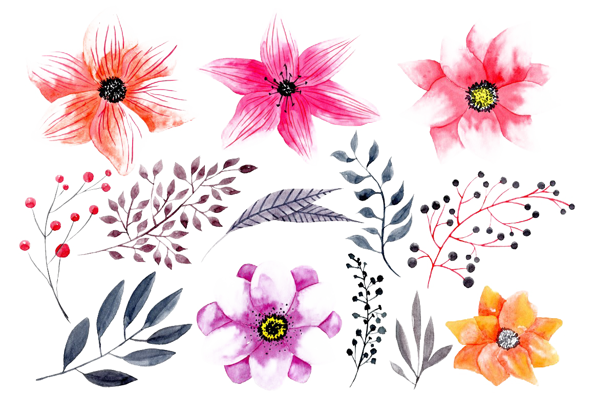 Watercolor Flowers PNG HD Photo SVG Clip arts