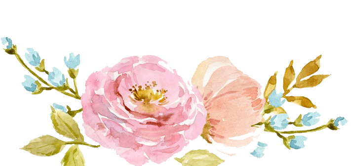 Watercolor Flowers PNG No Background SVG Clip arts