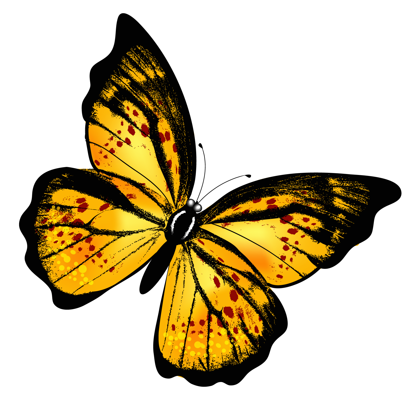 Yellow Butterfly PNG SVG Clip arts