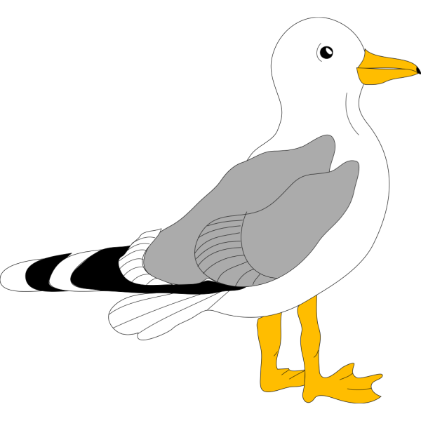 Cartoon Seagull PNG Clip art