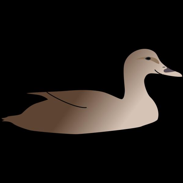 Brown Duck Art PNG Clip art
