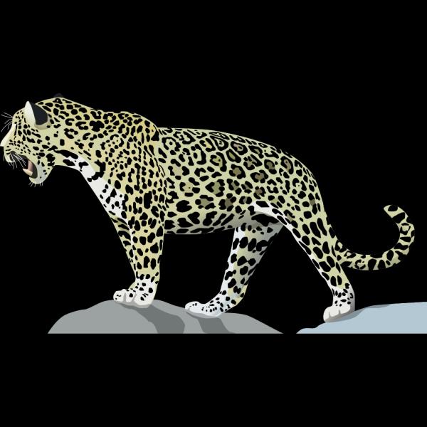Jaguar 3 PNG images