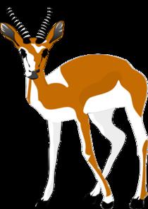 Antelope PNG Clip art
