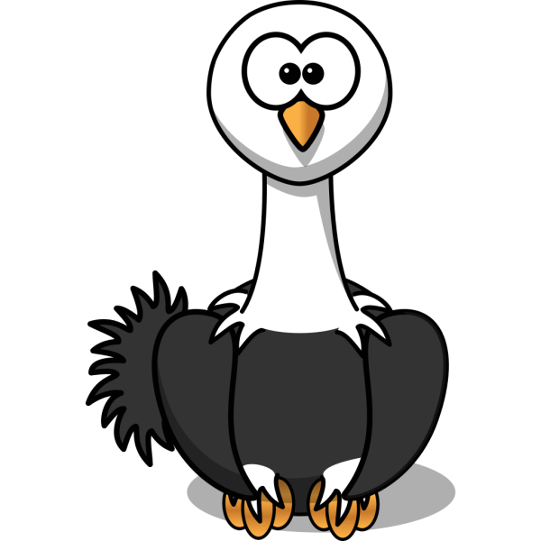 Ostrich With Black Feathers PNG images