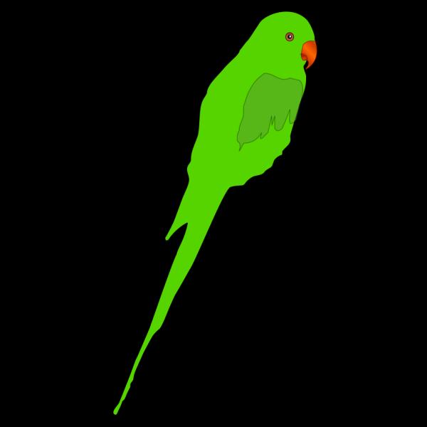 Green Parrot PNG Clip art