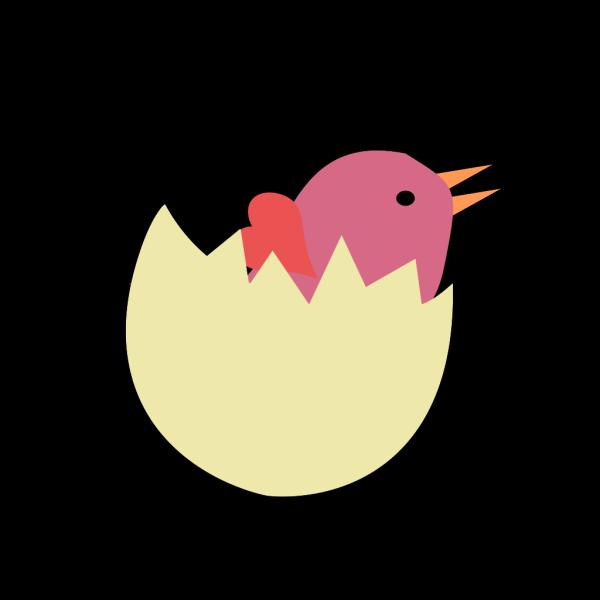 Bird In Broken Egg PNG images