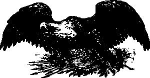 War Eagle PNG images