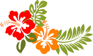 Hibiscus Opuesto PNG icon
