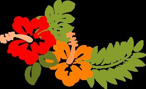 Hibiscus Opuesto PNG images