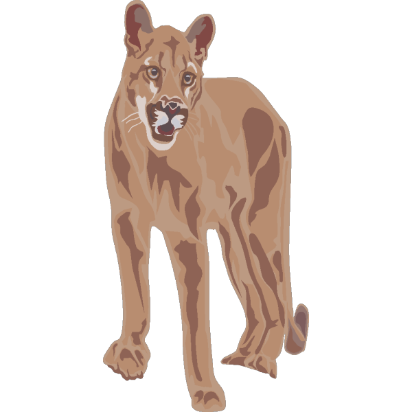 Cougar Art PNG icon