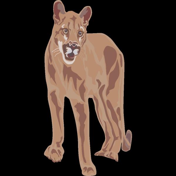 Cougar Art PNG image