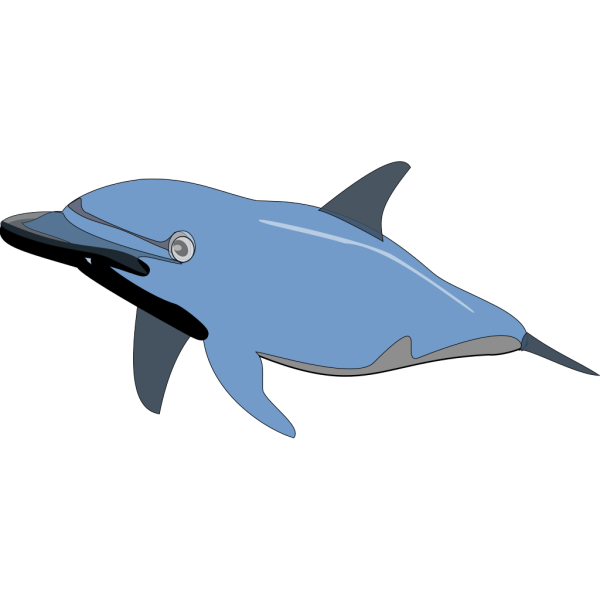 Blue Dolphin PNG Clip art