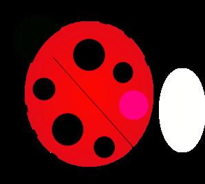 Ladybug 5 PNG images