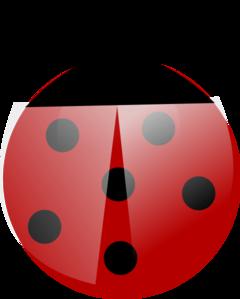 Ladybug Flat Colors PNG Clip art