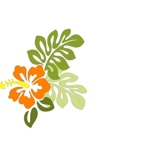 Hibiscus PNG images