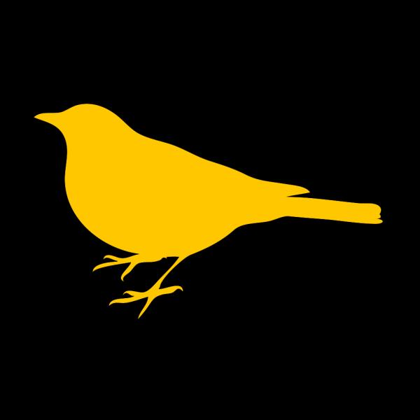 Goldenrod Bird PNG Clip art