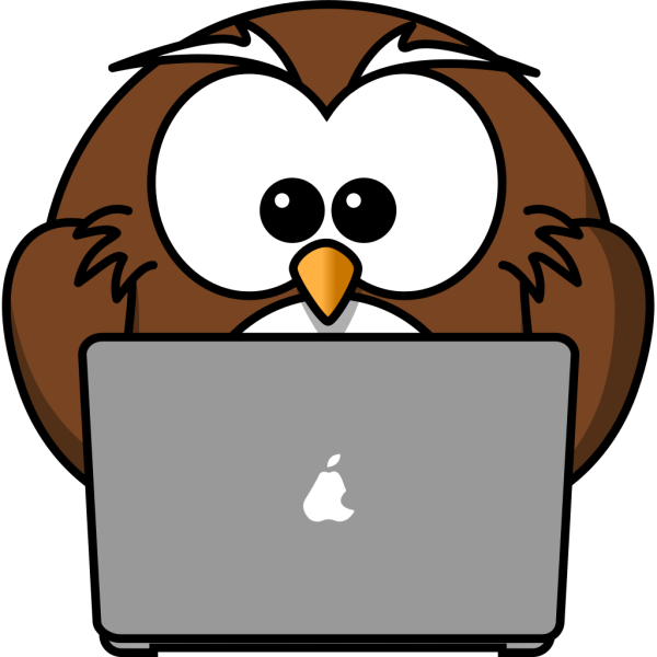 Owl Using A Laptop PNG images