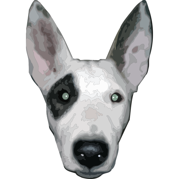Bullterrier Head 5 PNG images
