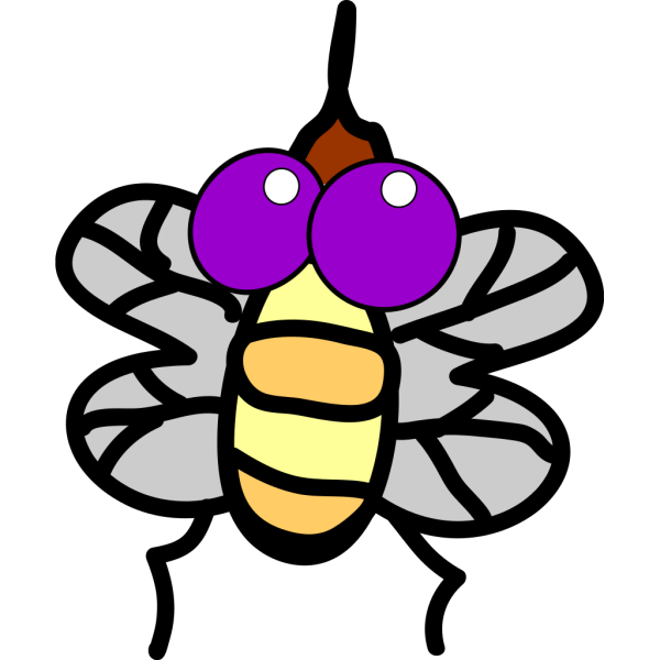 Fly PNG images
