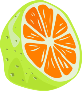Orange PNG icons