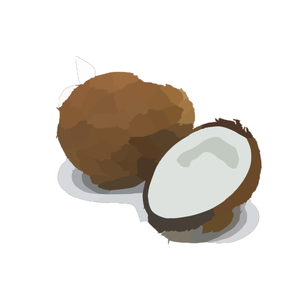 Coconut PNG icon