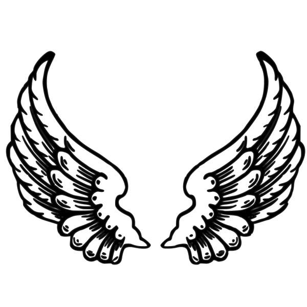 Wing PNG Clip art