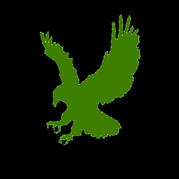Green Hawk PNG Clip art