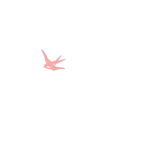 Swallow PNG images