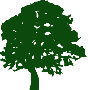 Blue Oak Tree PNG Clip art