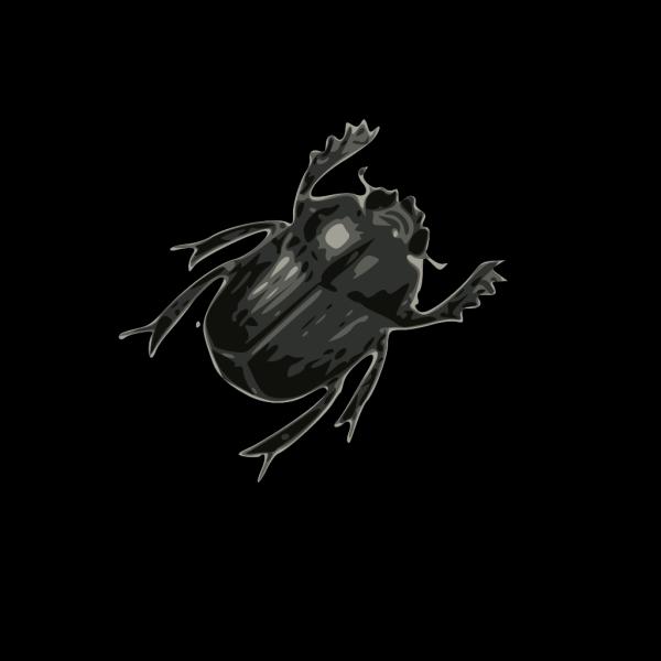 Beatle PNG Clip art