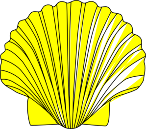 Shell.jpg PNG images
