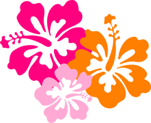 Hibiscus 8 PNG images