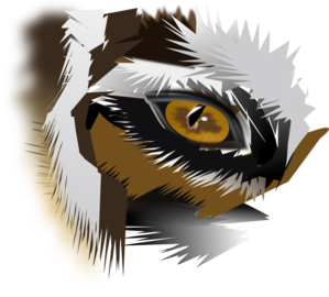 Eye Of The Tiger PNG Clip art