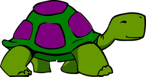 Green Sea Turtle PNG images