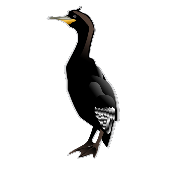 Cormorant Md PNG images