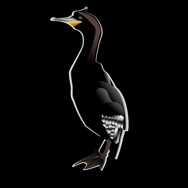Cormorant Md PNG Clip art