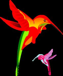 Kaleidoscope Bird PNG images